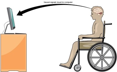 Handicapped Interface